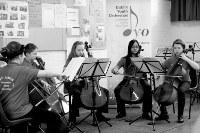 The Cello Ensemble